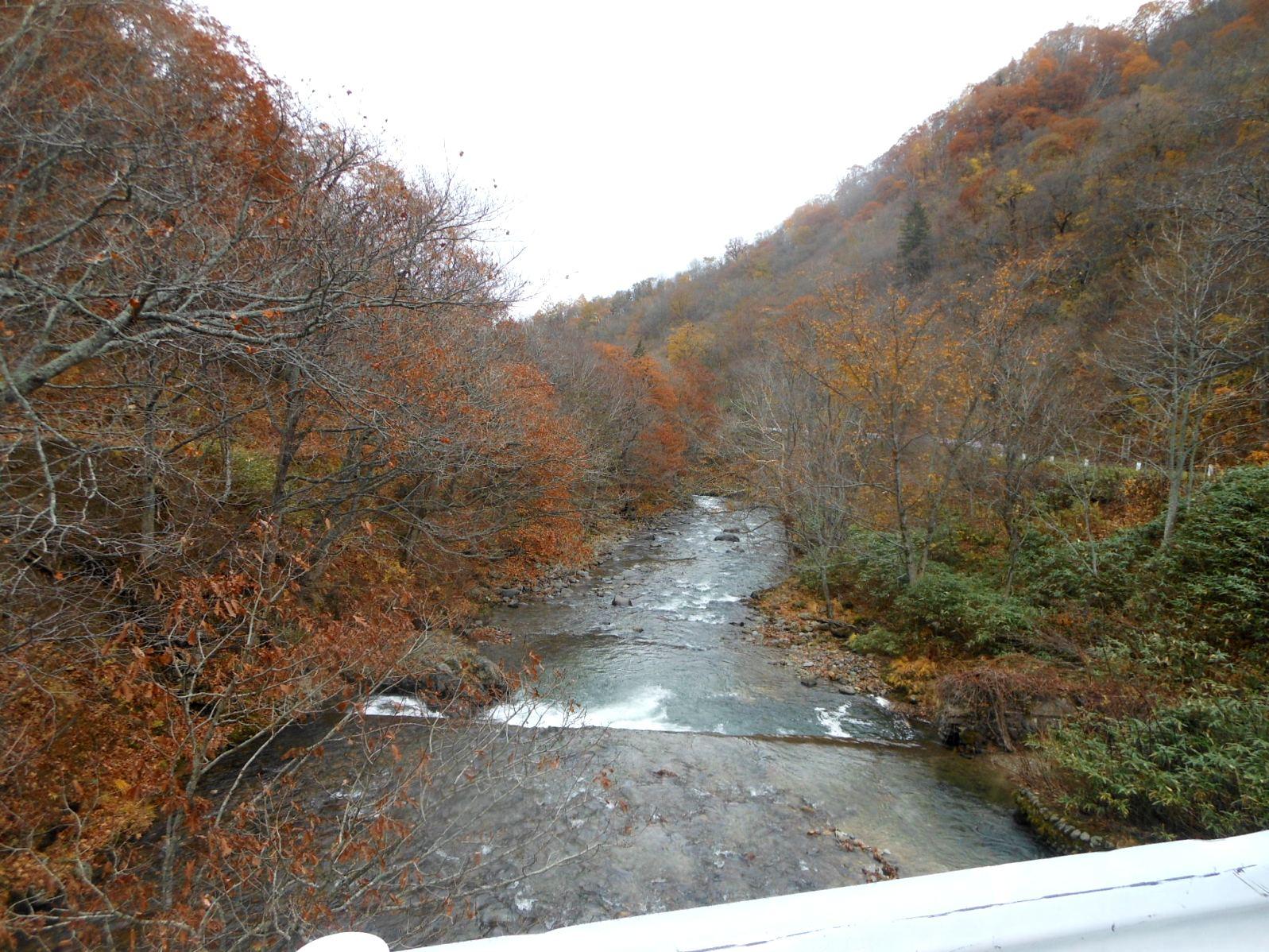 1856) 札幌定山渓付近の紅葉_f0126829_13171859.jpg