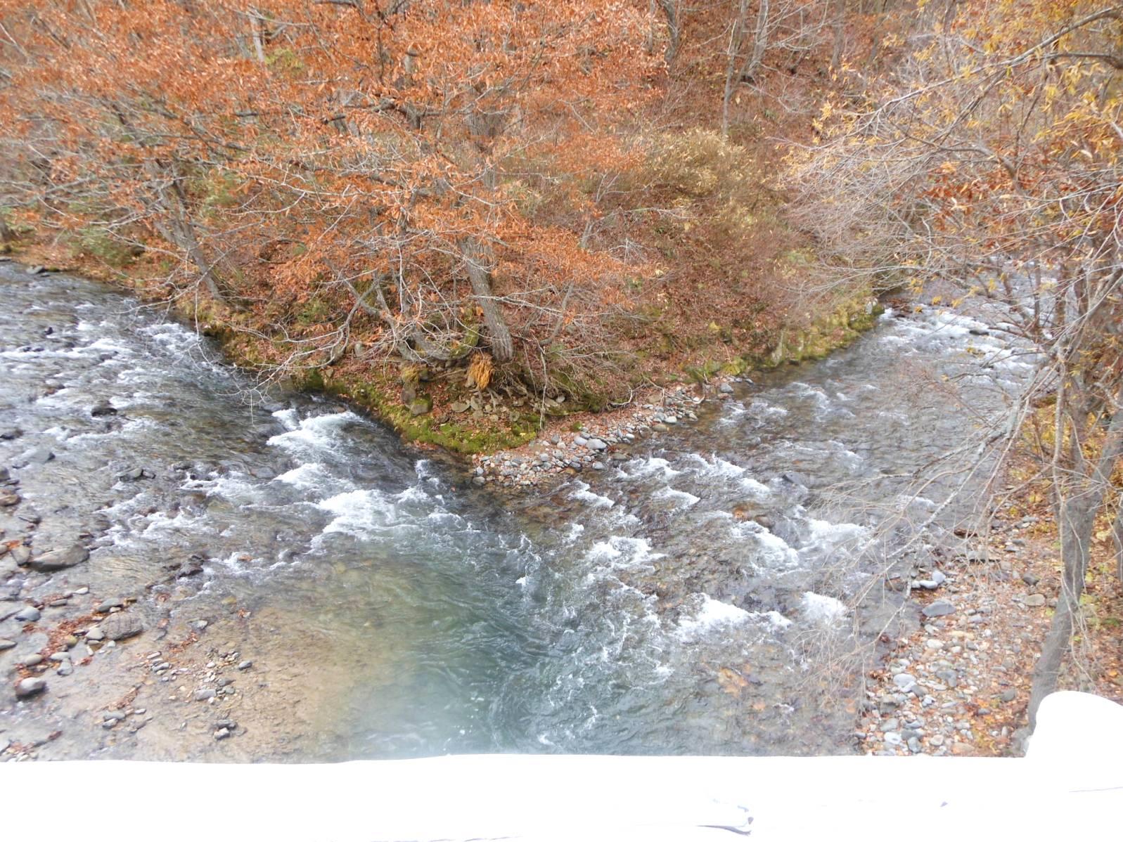 1856) 札幌定山渓付近の紅葉_f0126829_135874.jpg