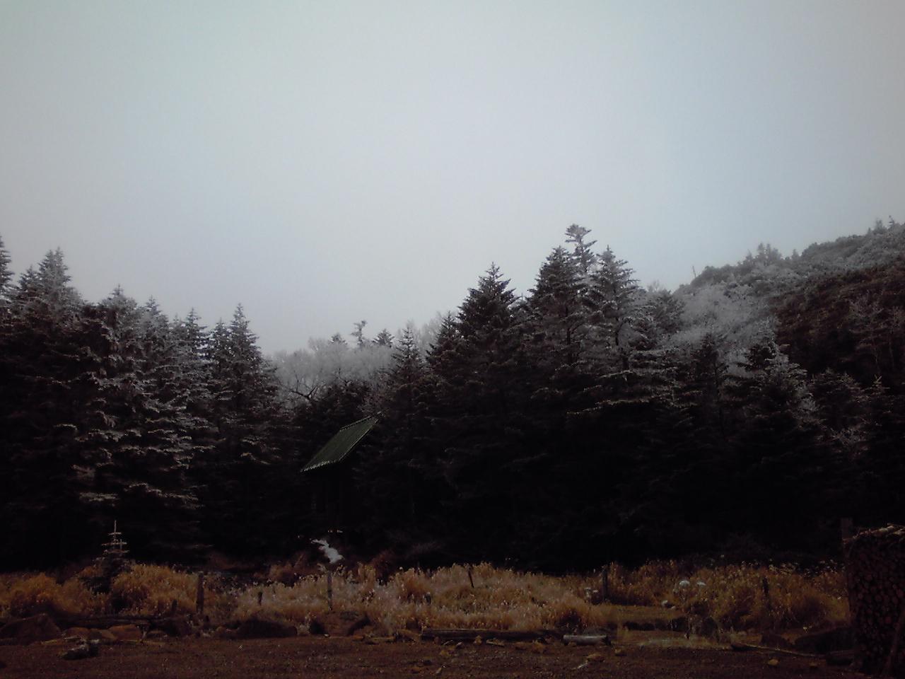 樹氷_e0155231_7305085.jpg