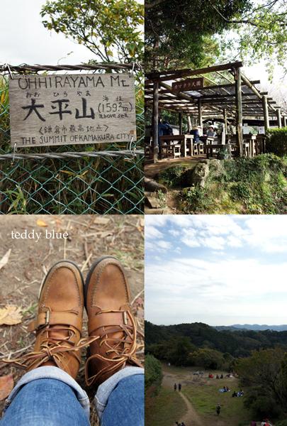 hiking in Kamakura Alps  鎌倉アルプス ハイキング_e0253364_18443632.jpg