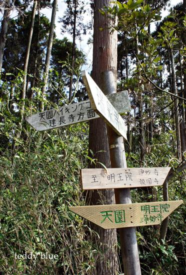 hiking in Kamakura Alps  鎌倉アルプス ハイキング_e0253364_18445468.jpg