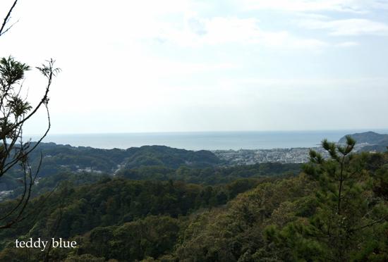 hiking in Kamakura Alps  鎌倉アルプス ハイキング_e0253364_18452121.jpg