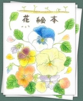 アナーセン パンジー・ビオラまつり_b0137969_1936413.jpg