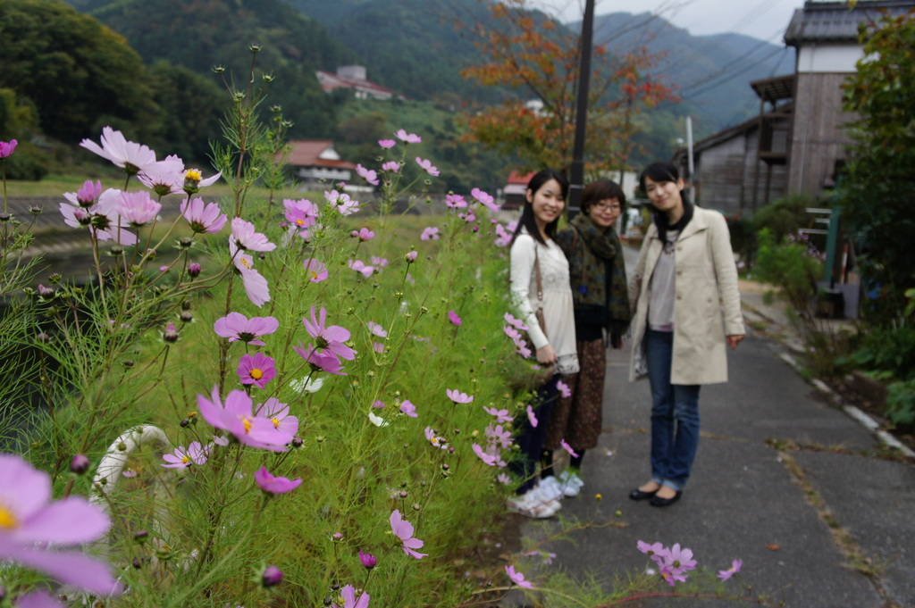 美味しい津和野、イノシシの「げんごろう」_c0180686_8103527.jpg