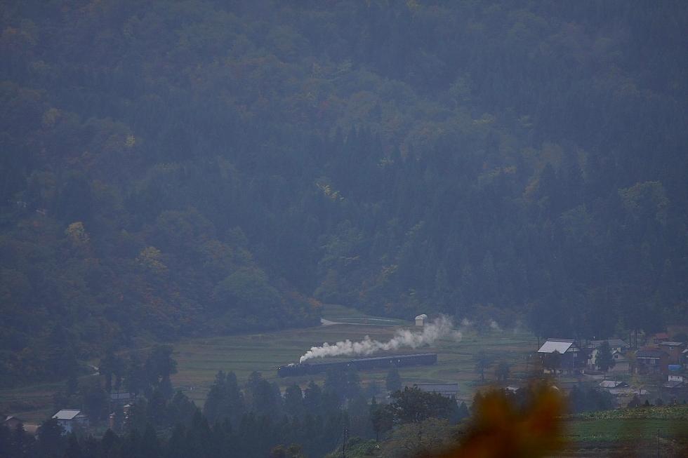 雨の日、里の秋 - 2012年秋・飯山線 -  _b0190710_2284859.jpg