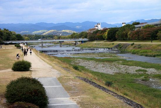 鴨川河畔 黄葉盛り_e0048413_19243192.jpg