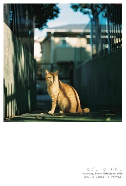 Kahoring Photo Exhibition #015  「 とごし と わたし 」_b0189039_284685.jpg