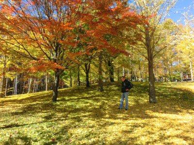 紅葉真っ盛り♪_f0019247_16575648.jpg
