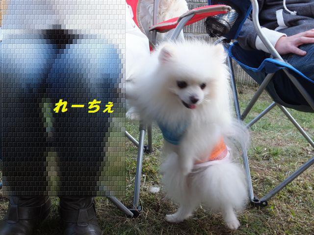 a0130451_19301214.jpg