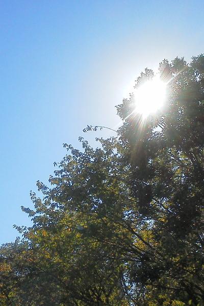 特別な冬の日に_c0249163_11423314.jpg