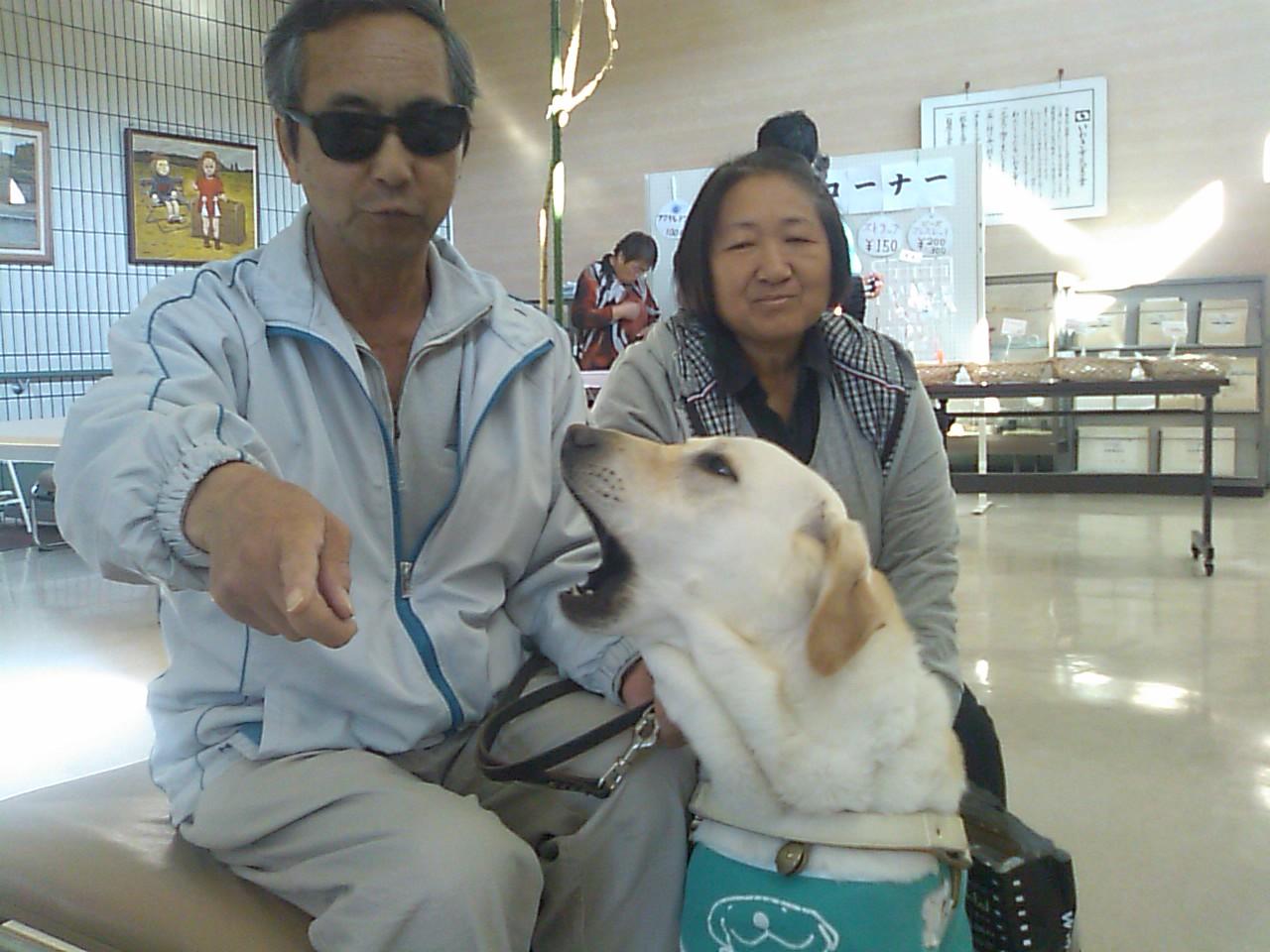 盲人福祉協会文化祭、盲導犬のエバァくん_e0068696_20422115.jpg