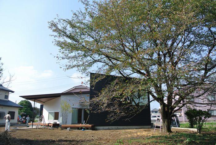 成島の家_d0106648_8525275.jpg