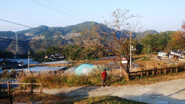 Cottaje 木の村_b0227552_16233666.jpg