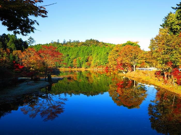 紅葉と釣り。。。。_c0197578_226766.jpg