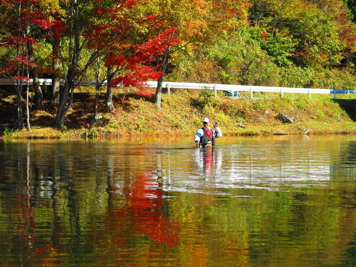 紅葉と釣り。。。。_c0197578_2373628.jpg