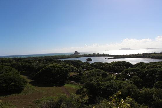 ハワイ旅行パート6_b0210688_15384854.jpg