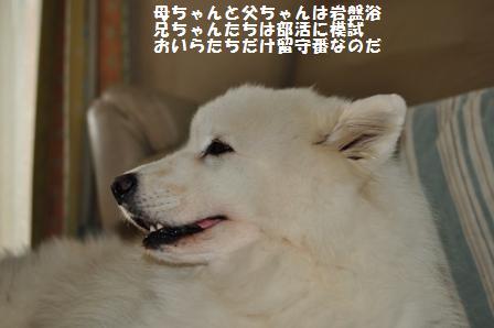 f0212597_11431189.jpg