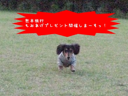 b0044804_13532941.jpg