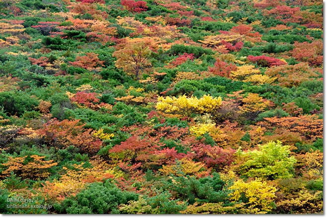 紅葉の絶景ハイキング! 安達太良山_f0179404_21185063.jpg