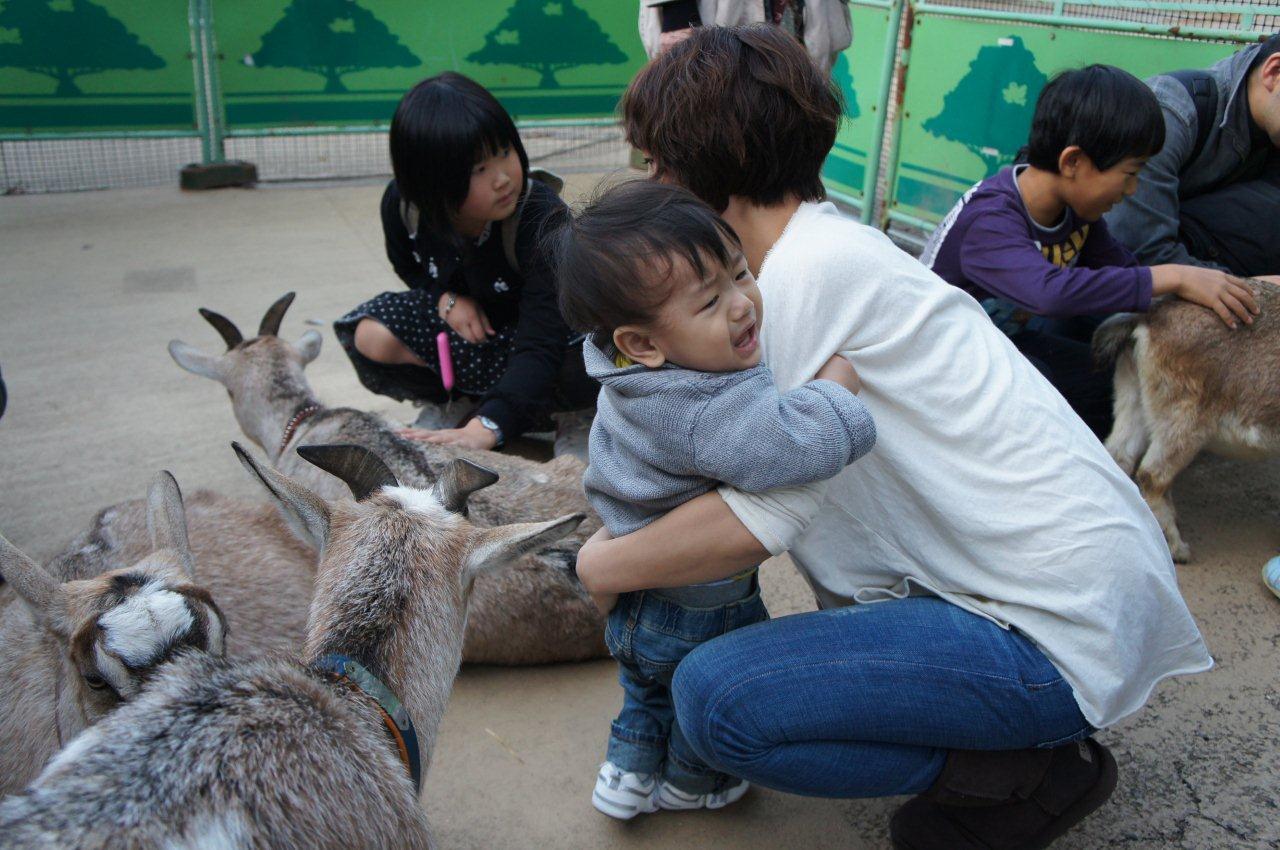 動物園デビュー!_e0253026_0212147.jpg