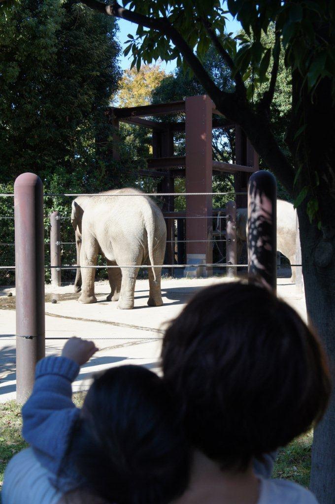 動物園デビュー!_e0253026_092494.jpg