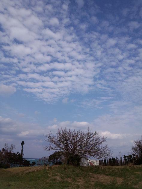 11月6日連休も終わったとたんに海、荒れ荒れ_c0070933_22503892.jpg