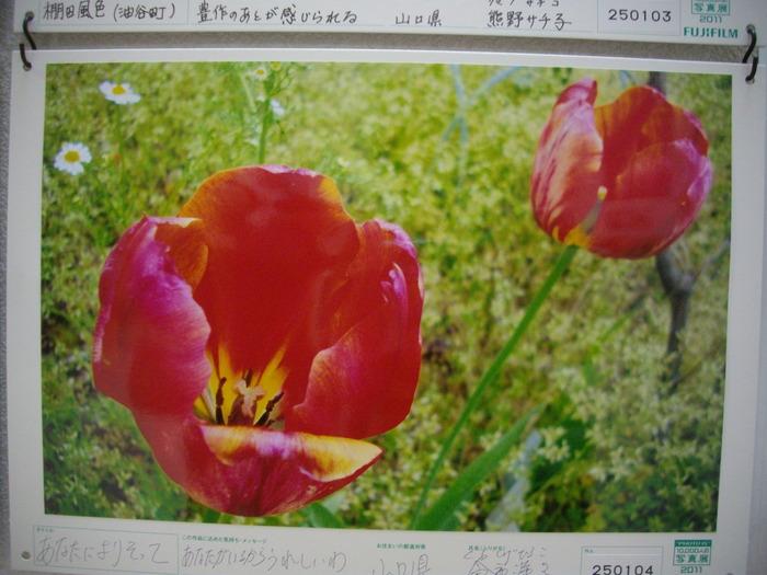 f0113862_10591024.jpg