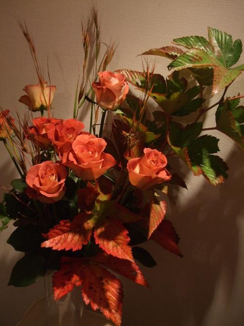 オークリーフ(㐂八さん8周年のお花)_f0049672_12592613.jpg
