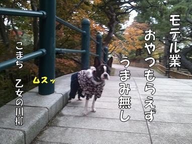 d0256580_13254781.jpg