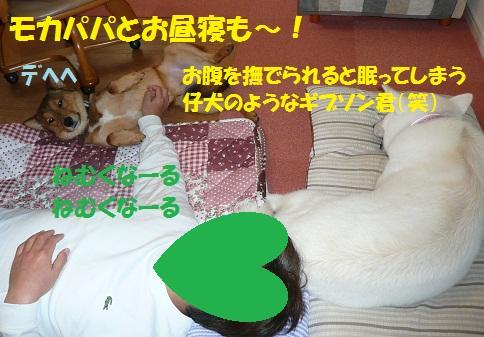 f0121712_15283362.jpg