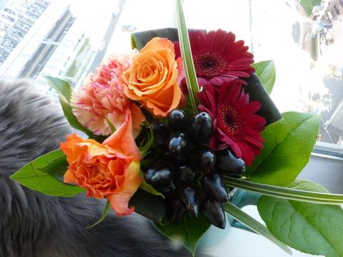 花束とネコ_e0237625_22183692.jpg