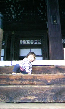 御本山参拝_b0245734_1542750.jpg