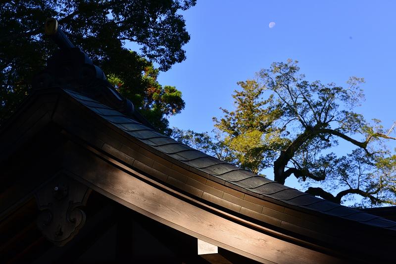 お伊勢さん詣り_f0050534_831975.jpg