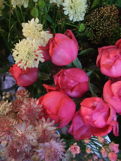 オークリーフ(市川バラ園の花たち)_f0049672_17421744.jpg