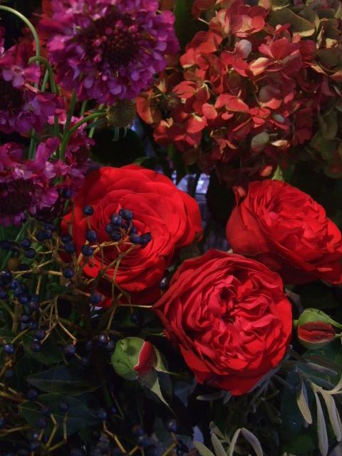 オークリーフ(市川バラ園の花たち)_f0049672_1747302.jpg