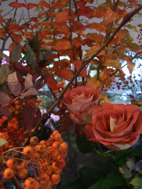 オークリーフ(市川バラ園の花たち)_f0049672_17501570.jpg