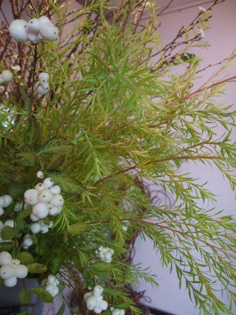 オークリーフ(市川バラ園の花たち)_f0049672_17503575.jpg