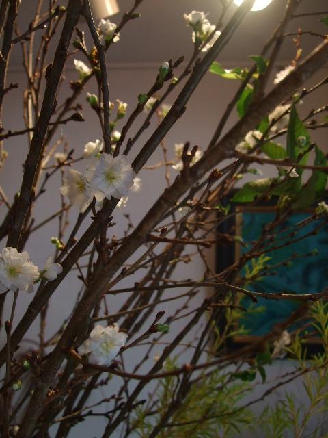 オークリーフ(市川バラ園の花たち)_f0049672_17513541.jpg