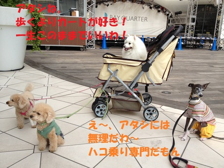 f0223972_7183280.jpg