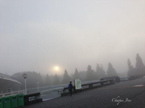 目の前が真っ白で公園が隠れちゃったよ…_d0266681_8553339.jpg