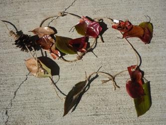 落ち葉や松ぼっくりでガーランド作り。_e0188087_2245983.jpg