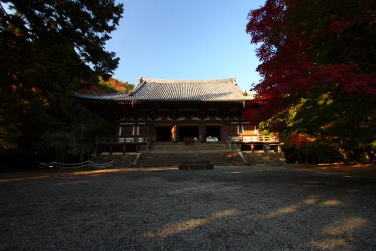 神護寺_e0051888_21535147.jpg