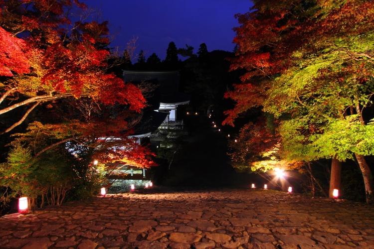 神護寺_e0051888_2156193.jpg
