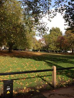 from LONDON_f0061394_19582742.jpg