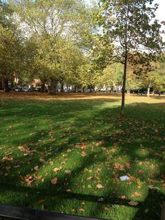 from LONDON_f0061394_2034328.jpg
