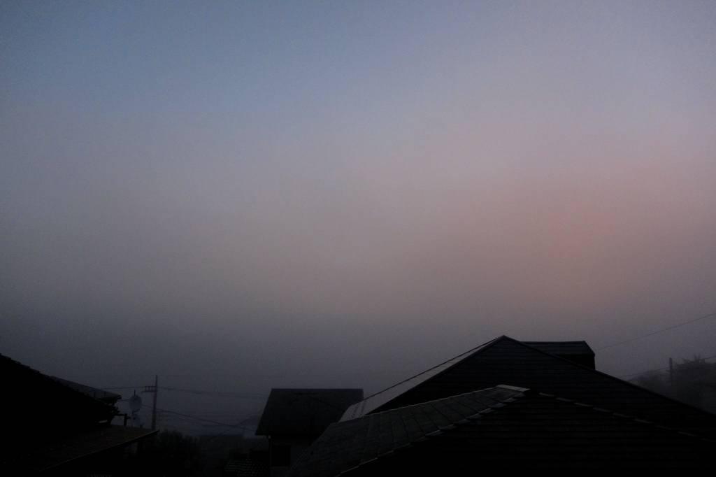 シメが飛び出した/濃霧でした/また車を突かれた_b0024798_1023447.jpg