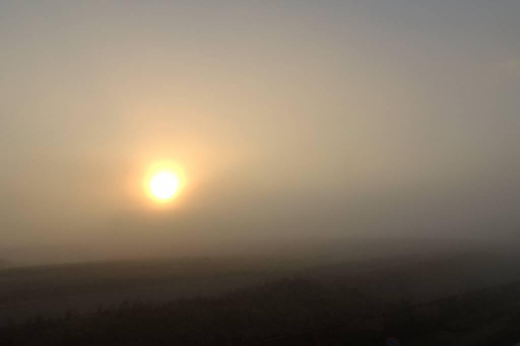 シメが飛び出した/濃霧でした/また車を突かれた_b0024798_102415.jpg