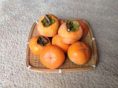 自宅の木の柿_e0054299_713491.jpg