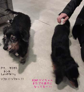 b0249672_20105828.jpg