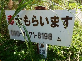 d0240983_20112860.jpg